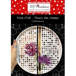 Fiche n°48 - Fleurs des champs